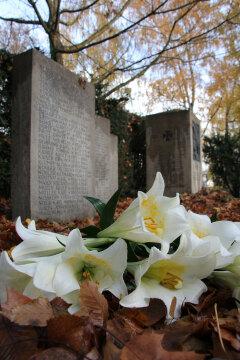 Foto: Weiße Lilien liegen auf einem mit Laub bedekten Boden vor einem Kriegsdenkmal